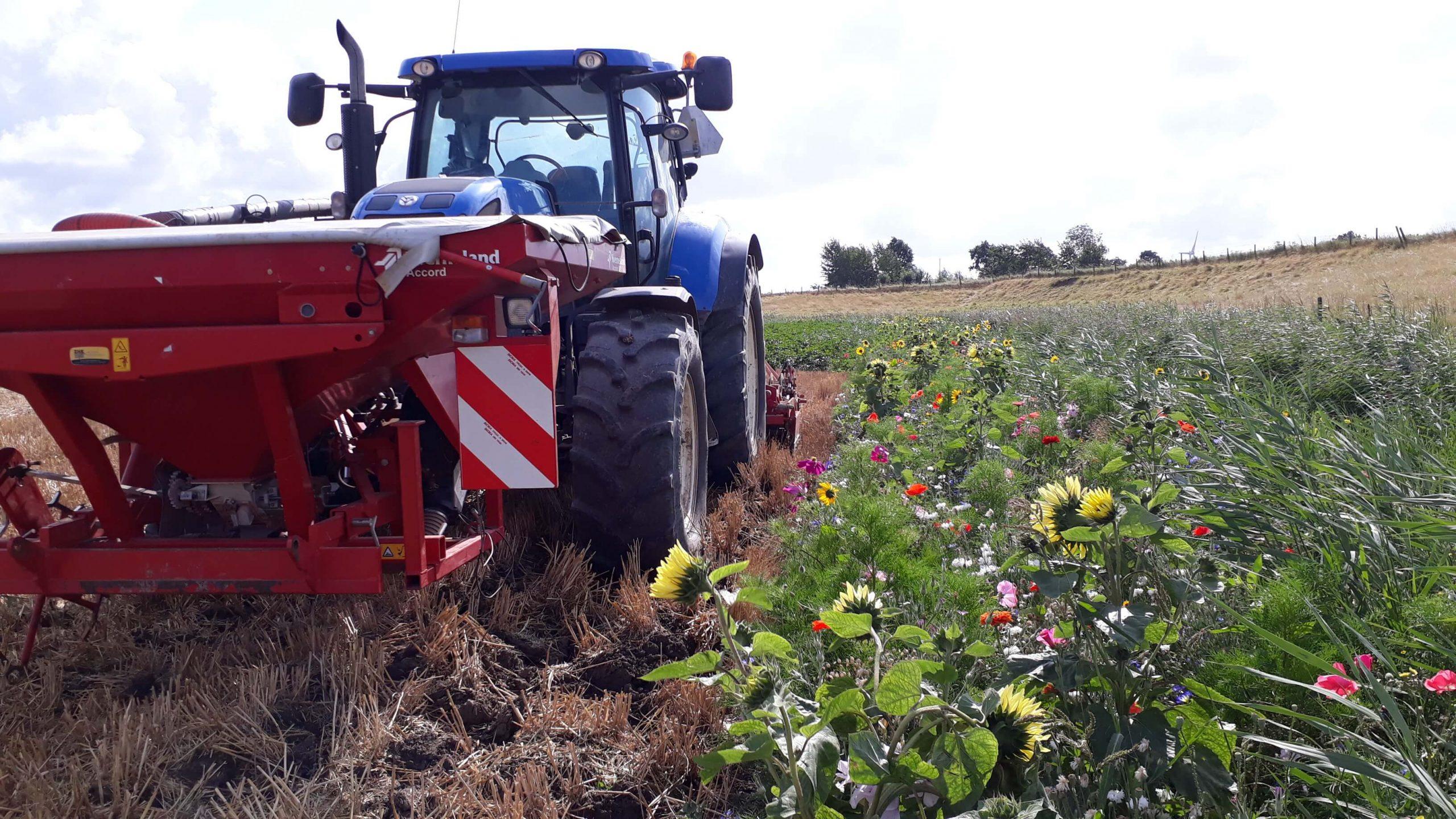 zaaien groenbemester bloemenrand trekker duurzaam - brielse boer